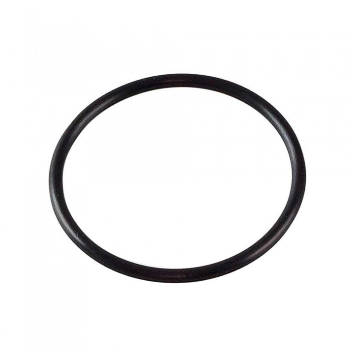 Уплотнительное кольцо 100 мм для ИТА-09 F9037
